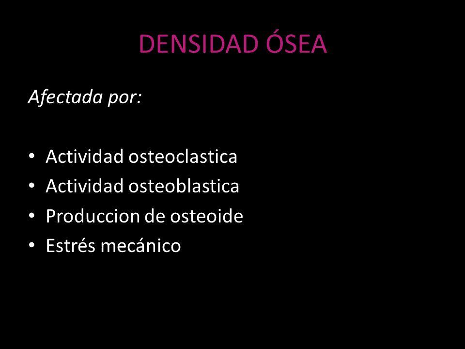 DENSIDAD ÓSEA Afectada por: Actividad osteoclastica Actividad osteoblastica Produccion de osteoide Estrés mecánico