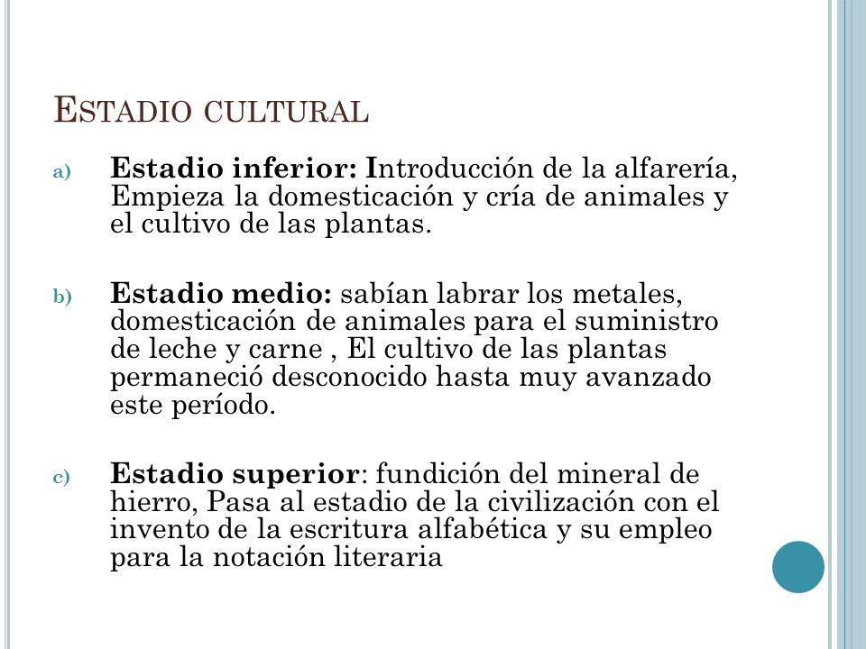 E STADIO CULTURAL a) Estadio inferior: I ntroducción de la alfarería, Empieza la domesticación y cría de animales y el cultivo de las plantas. b) Esta