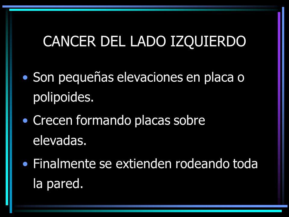 CANCER DEL LADO IZQUIERDO Son pequeñas elevaciones en placa o polipoides. Crecen formando placas sobre elevadas. Finalmente se extienden rodeando toda
