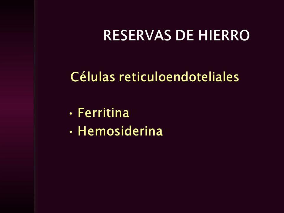 RESERVAS DE HIERRO Células reticuloendoteliales Ferritina Hemosiderina