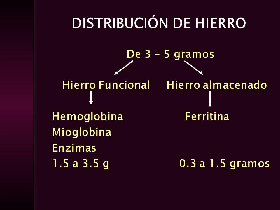 DISTRIBUCIÓN DE HIERRO De 3 – 5 gramos Hierro Funcional Hierro almacenado Hemoglobina Ferritina Mioglobina Enzimas 1.5 a 3.5 g 0.3 a 1.5 gramos
