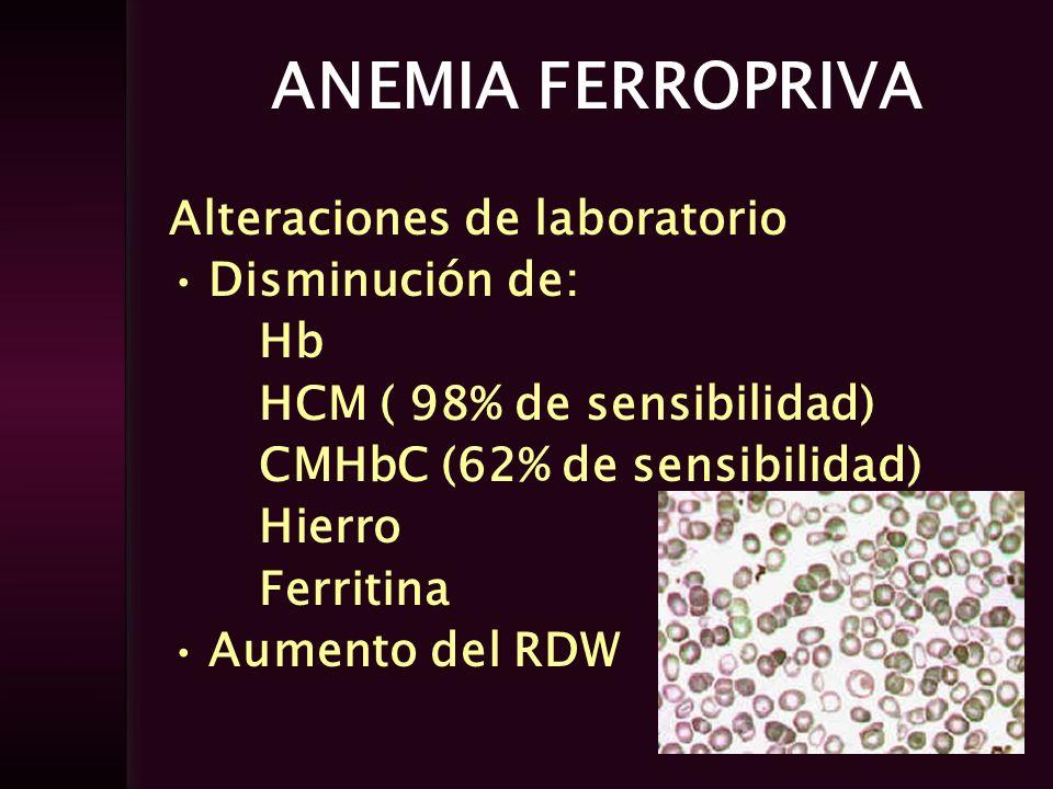 ANEMIA FERROPRIVA Alteraciones de laboratorio Disminución de: Hb HCM ( 98% de sensibilidad) CMHbC (62% de sensibilidad) Hierro Ferritina Aumento del R