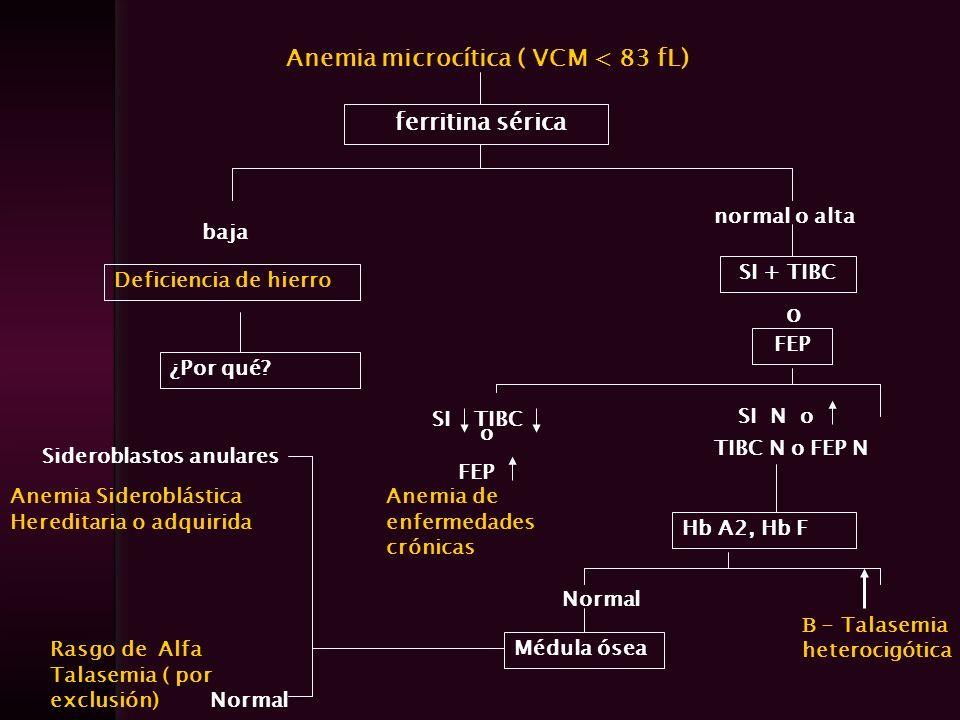 Anemia microcítica ( VCM < 83 fL) ferritina sérica baja normal o alta Deficiencia de hierro ¿Por qué? SI + TIBC o FEP SI TIBC o FEP Anemia de enfermed