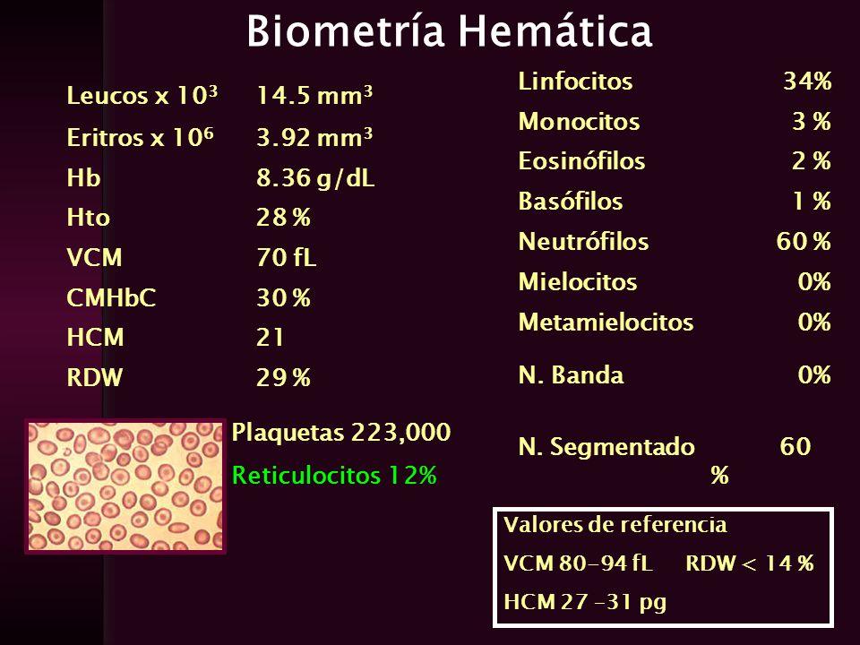 Biometría Hemática Leucos x 10 3 14.5 mm 3 Eritros x 10 6 3.92 mm 3 Hb8.36 g/dL Hto28 % VCM70 fL CMHbC30 % HCM21 RDW29 % Linfocitos34% Monocitos3 % Eo