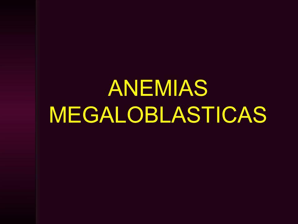 ANEMIAS MEGALOBLASTICAS