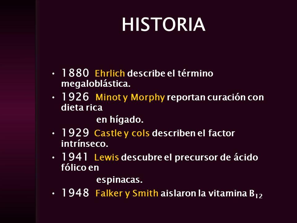 HISTORIA 1880 Ehrlich describe el término megaloblástica. 1926 Minot y Morphy reportan curación con dieta rica en hígado. 1929 Castle y cols describen