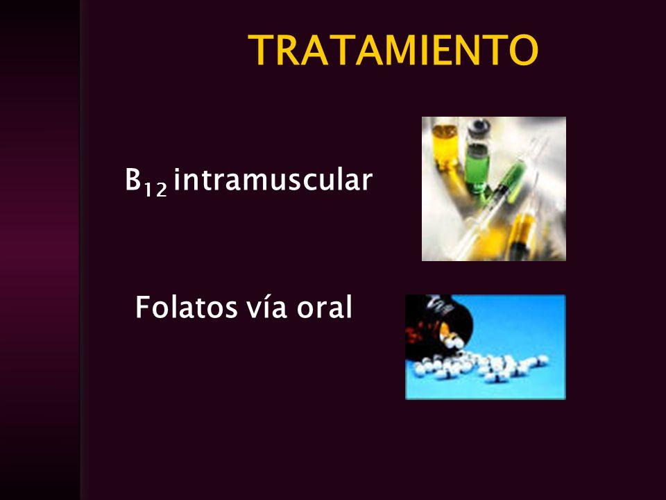 TRATAMIENTO B 12 intramuscular Folatos vía oral