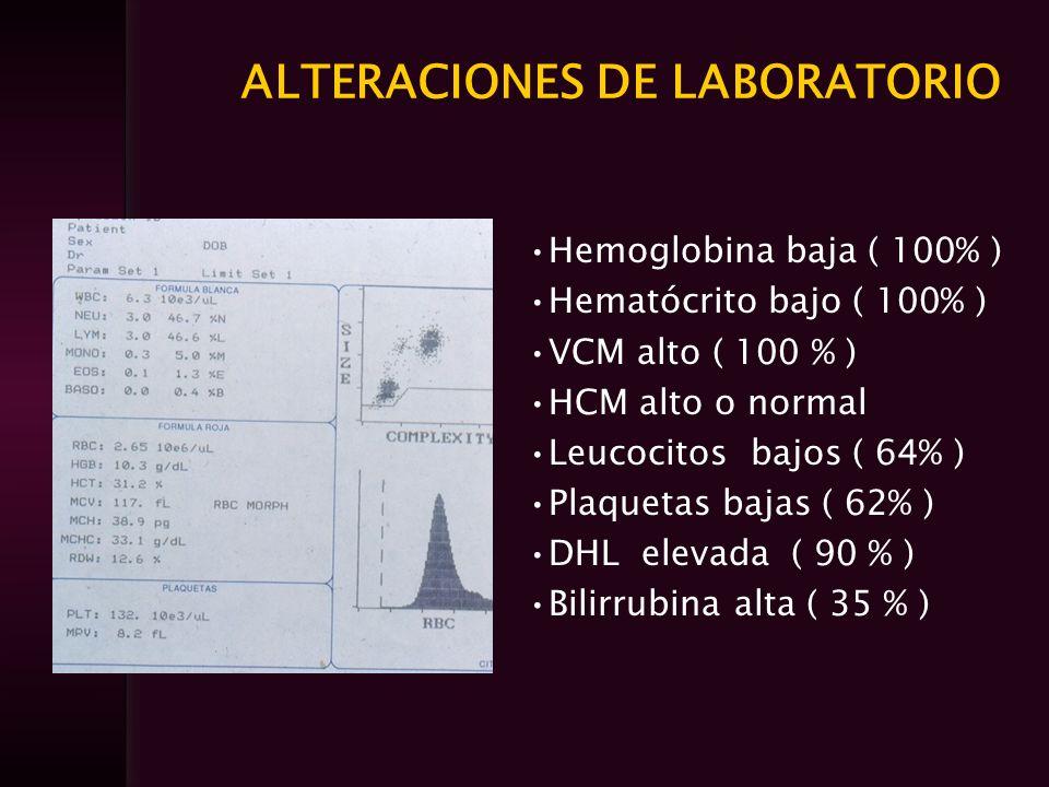 ALTERACIONES DE LABORATORIO Hemoglobina baja ( 100% ) Hematócrito bajo ( 100% ) VCM alto ( 100 % ) HCM alto o normal Leucocitos bajos ( 64% ) Plaqueta