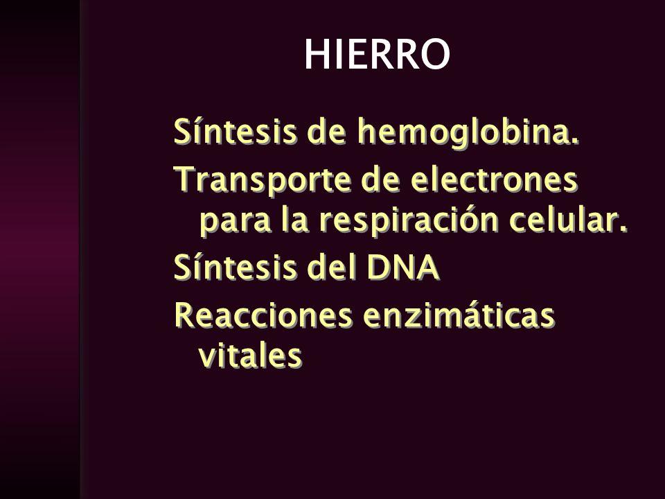 HIERRO Síntesis de hemoglobina. Transporte de electrones para la respiración celular. Síntesis del DNA Reacciones enzimáticas vitales Síntesis de hemo