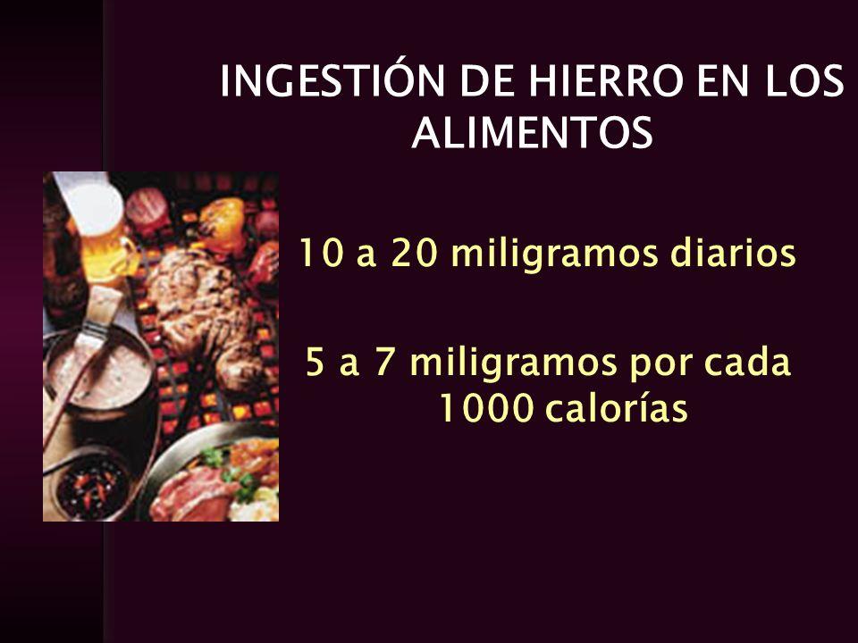 INGESTIÓN DE HIERRO EN LOS ALIMENTOS 10 a 20 miligramos diarios 5 a 7 miligramos por cada 1000 calorías