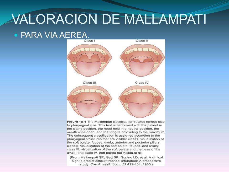 MONITOREO INVASIVO PRESION DE ARTERIA PULMONAR PRESION CAPILAR PULMONAR EN CUÑA Paciente grave hemodinámicamente inestable