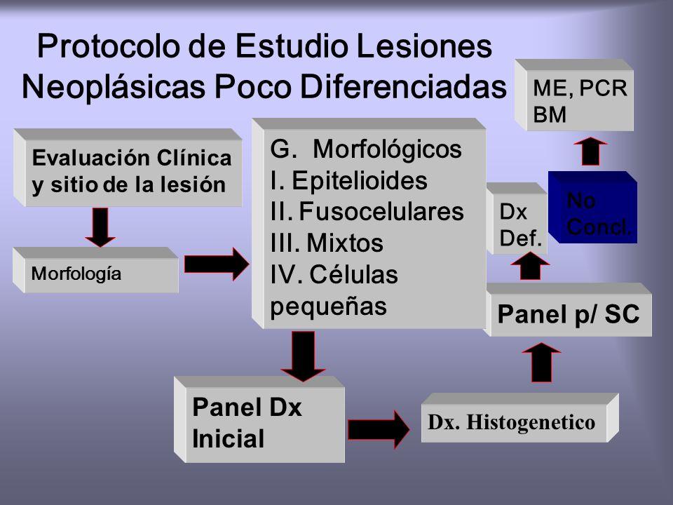 Inmunofenotipo Patología Quirúrgica Proceso reactivo vs. Neoplásico Linfoma vs. Neoplasia no Linfoide Inmunotipificación de Linfomas