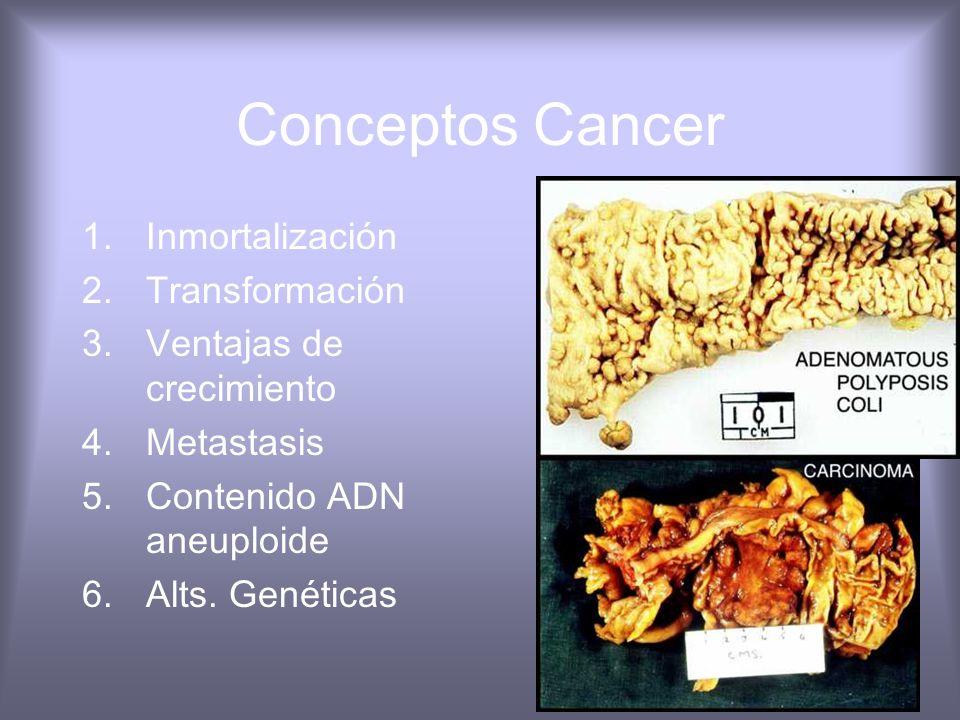 Conceptos Cancer Cancer es una enfermedad genética Protooncogenes (dominantes) Genes supresores (Recesivos) Genes que regulan la muerte celular progra