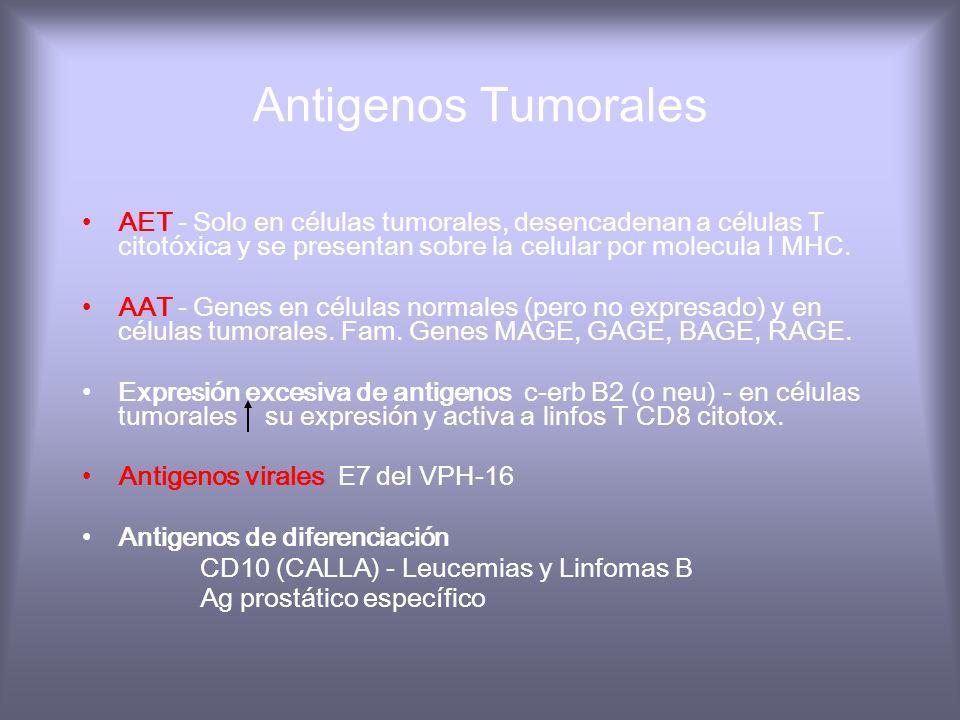 Virus DNA oncogénico VEB
