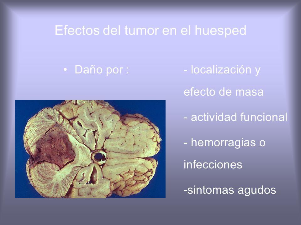 Inmunovigilancia SIDA, XLP. Otras inmuno del - 220 veces > prob. de Cancer Dx sanos - mecanismos p/evadir inmunodeficiencia - células tumorales no exp