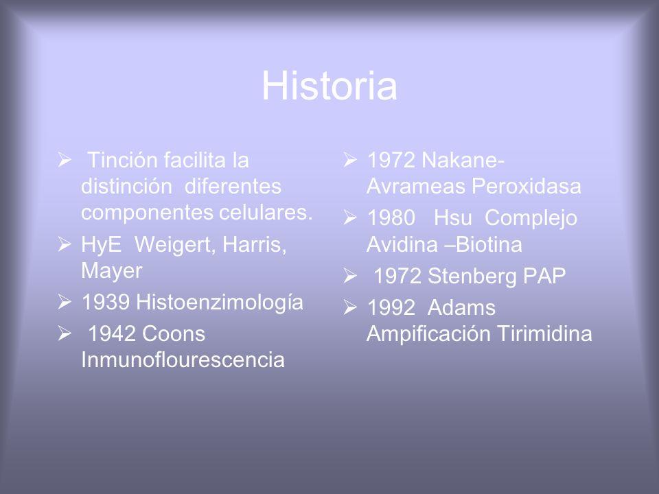 Diagnóstico del cancer Histológico y citológico Inmunotinción Diganóstico molécular Citometría del Flujo Marcadores Tumorales Datos clínicos muestra a
