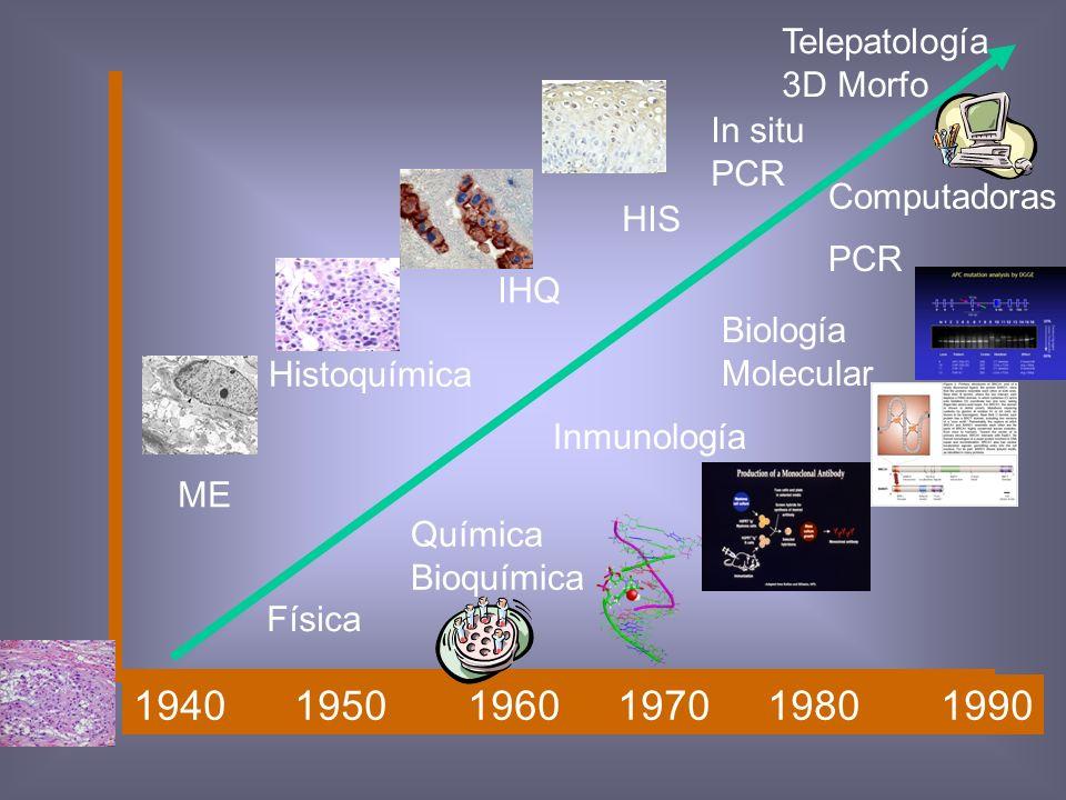 Tinción especial Subjetividad histopatologia Identificar célula en particular, tejido o enfermedad Técnica auxiliar Sensibilidad y especificidad acept