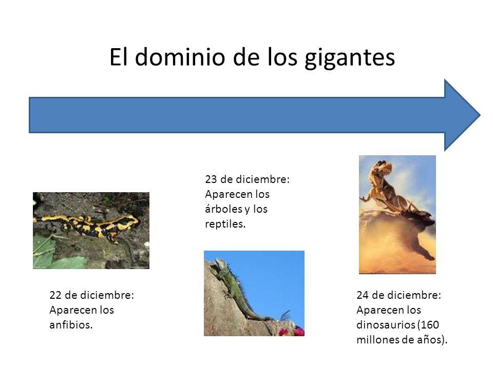 El dominio de los gigantes 22 de diciembre: Aparecen los anfibios. 23 de diciembre: Aparecen los árboles y los reptiles. 24 de diciembre: Aparecen los