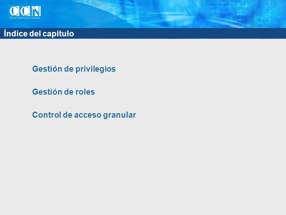 Índice del capítulo Gestión de privilegios Gestión de roles Control de acceso granular