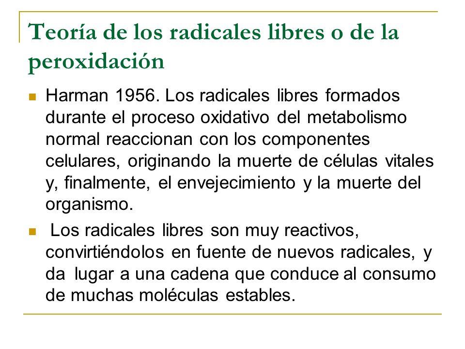 Teoría de los radicales libres o de la peroxidación Harman 1956. Los radicales libres formados durante el proceso oxidativo del metabolismo normal rea