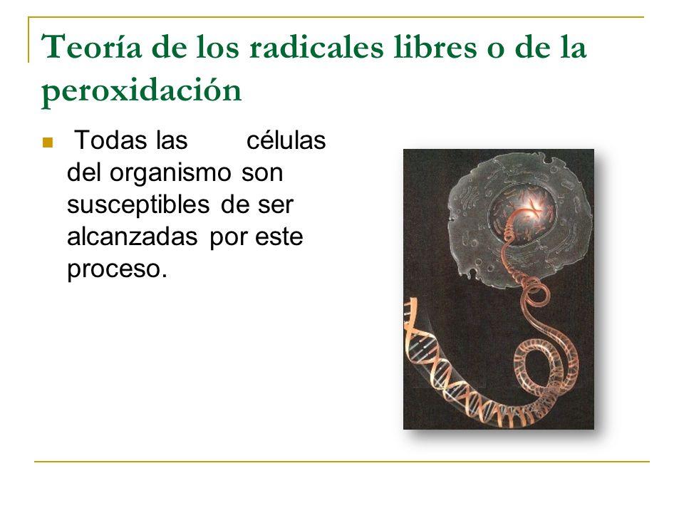 Teoría de los radicales libres o de la peroxidación Todas las células del organismo son susceptibles de ser alcanzadas por este proceso.