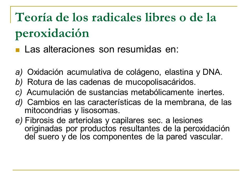 Teoría de los radicales libres o de la peroxidación Las alteraciones son resumidas en: a) Oxidación acumulativa de colágeno, elastina y DNA. b) Rotura