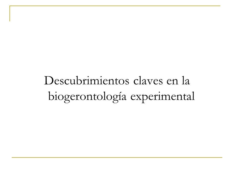 Descubrimientos claves en la biogerontología experimental