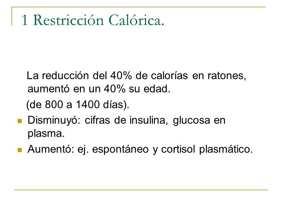 1 Restricción Calórica. La reducción del 40% de calorías en ratones, aumentó en un 40% su edad. (de 800 a 1400 días). Disminuyó: cifras de insulina, g