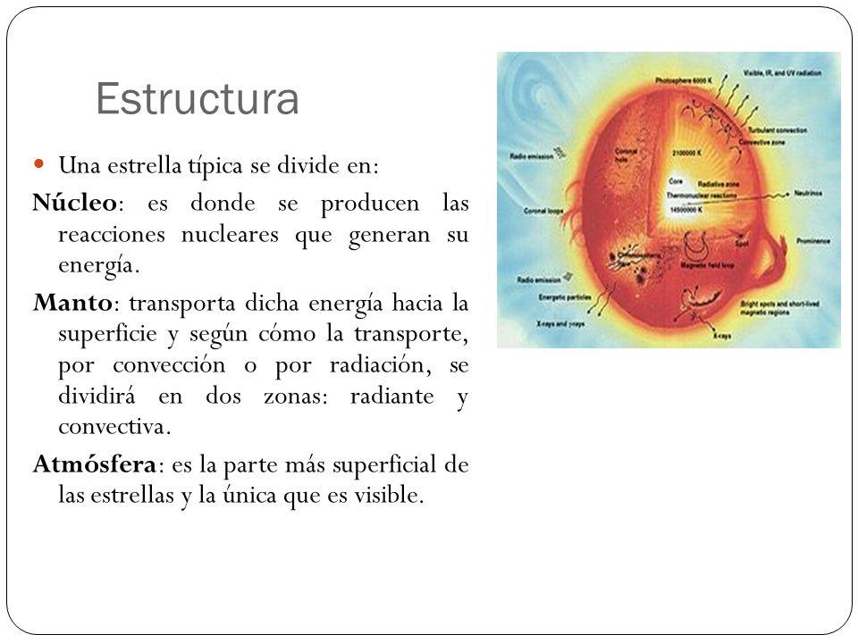 Estructura Una estrella típica se divide en: Núcleo: es donde se producen las reacciones nucleares que generan su energía. Manto: transporta dicha ene
