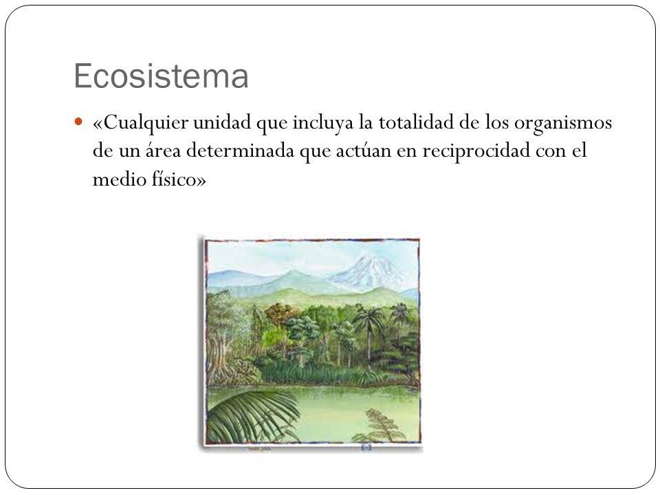 Ecosistema «Cualquier unidad que incluya la totalidad de los organismos de un área determinada que actúan en reciprocidad con el medio físico»