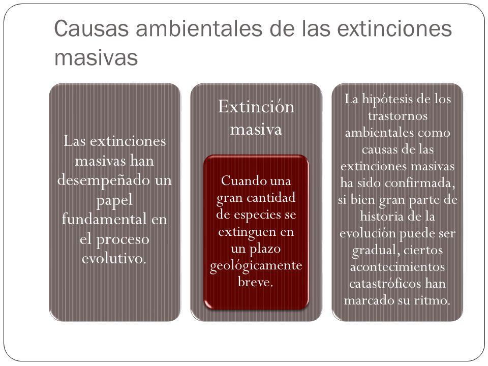 Causas ambientales de las extinciones masivas Las extinciones masivas han desempeñado un papel fundamental en el proceso evolutivo. Extinción masiva C