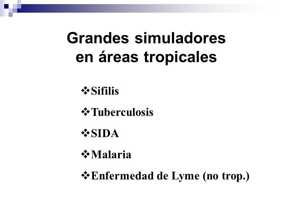 Grandes simuladores en áreas tropicales Sifilis Tuberculosis SIDA Malaria Enfermedad de Lyme (no trop.)