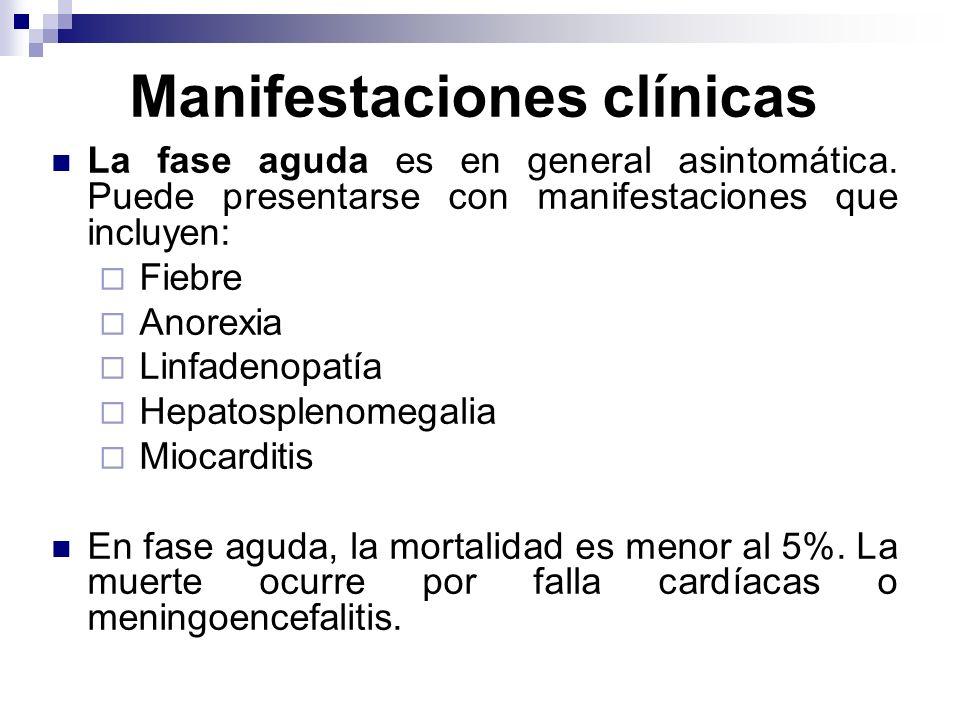 Manifestaciones clínicas La fase aguda es en general asintomática. Puede presentarse con manifestaciones que incluyen: Fiebre Anorexia Linfadenopatía