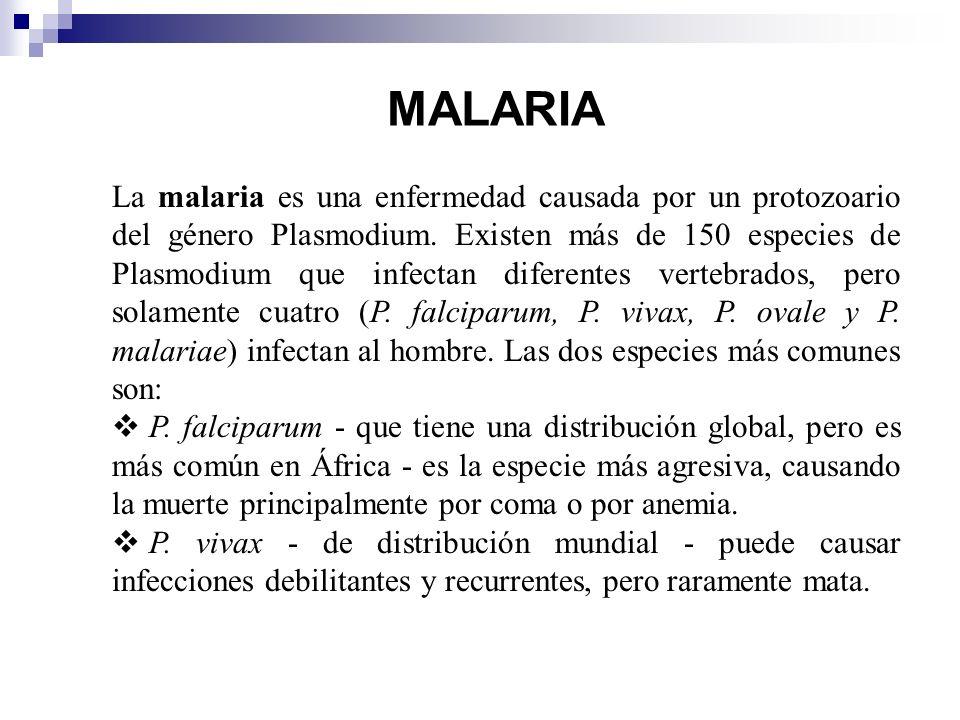 MALARIA La malaria es una enfermedad causada por un protozoario del género Plasmodium. Existen más de 150 especies de Plasmodium que infectan diferent