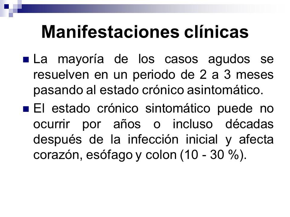 Manifestaciones clínicas La mayoría de los casos agudos se resuelven en un periodo de 2 a 3 meses pasando al estado crónico asintomático. El estado cr