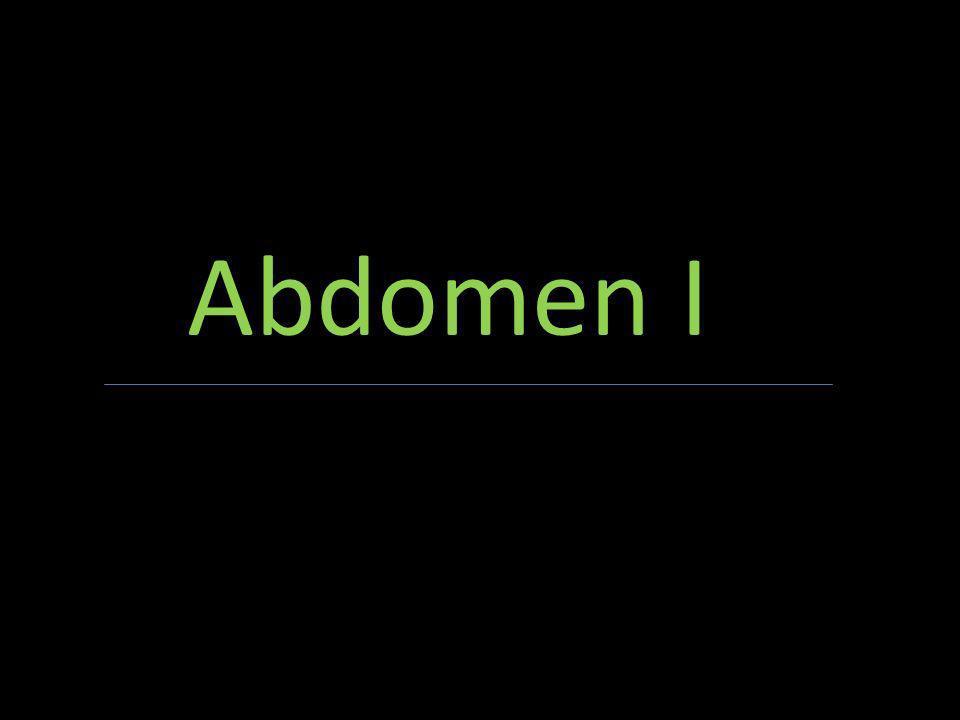 Abdomen I