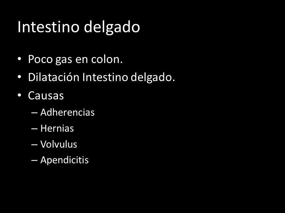 Intestino delgado Poco gas en colon. Dilatación Intestino delgado. Causas – Adherencias – Hernias – Volvulus – Apendicitis