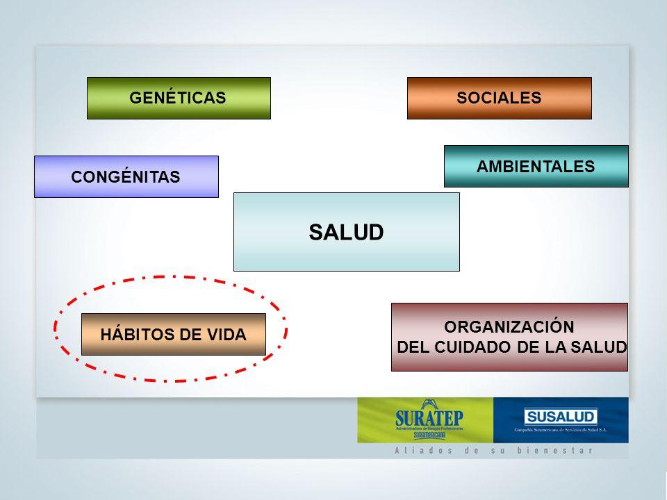 SALUD HÁBITOS DE VIDA AMBIENTALESCONGÉNITAS GENÉTICASSOCIALES FACTORES DE RIESGO FACTORES DE PROTECCIÓN ORGANIZACIÓN DEL CUIDADO DE LA SALUD