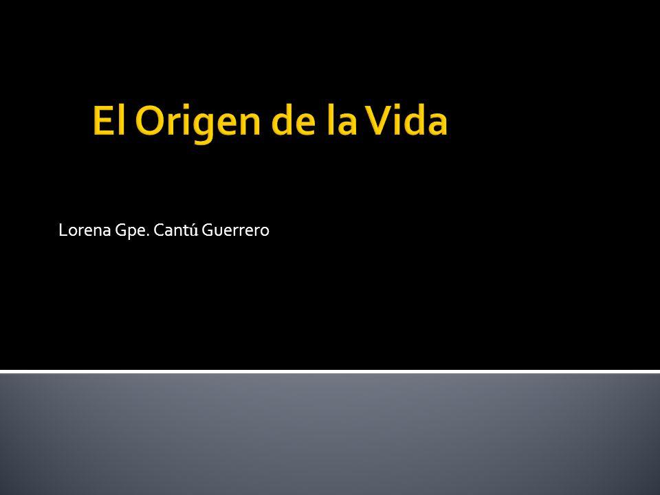Lorena Gpe. Cant ú Guerrero