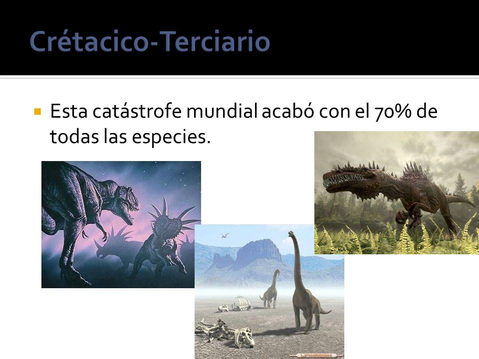 Esta catástrofe mundial acabó con el 70% de todas las especies.