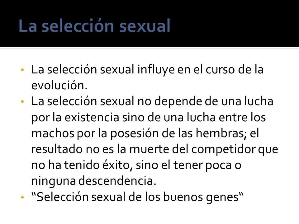 La selección sexual influye en el curso de la evolución. La selección sexual no depende de una lucha por la existencia sino de una lucha entre los mac