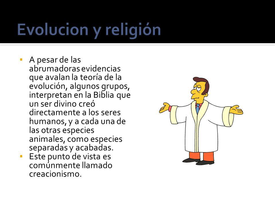 A pesar de las abrumadoras evidencias que avalan la teoría de la evolución, algunos grupos, interpretan en la Biblia que un ser divino creó directamen