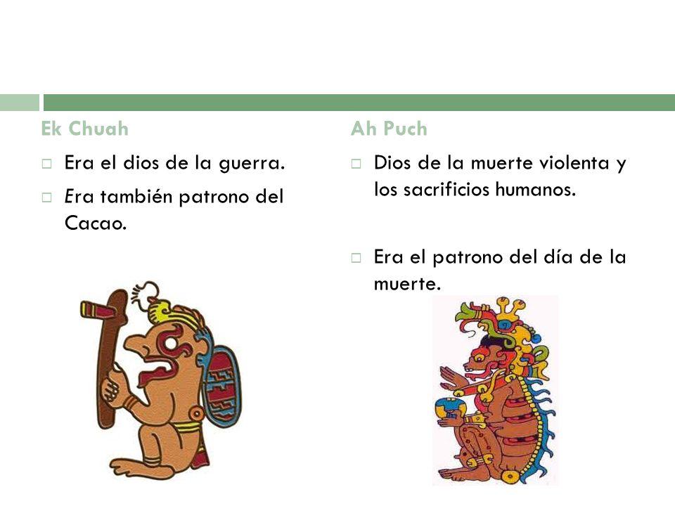 Ek Chuah Era el dios de la guerra. Era también patrono del Cacao. Ah Puch Dios de la muerte violenta y los sacrificios humanos. Era el patrono del día