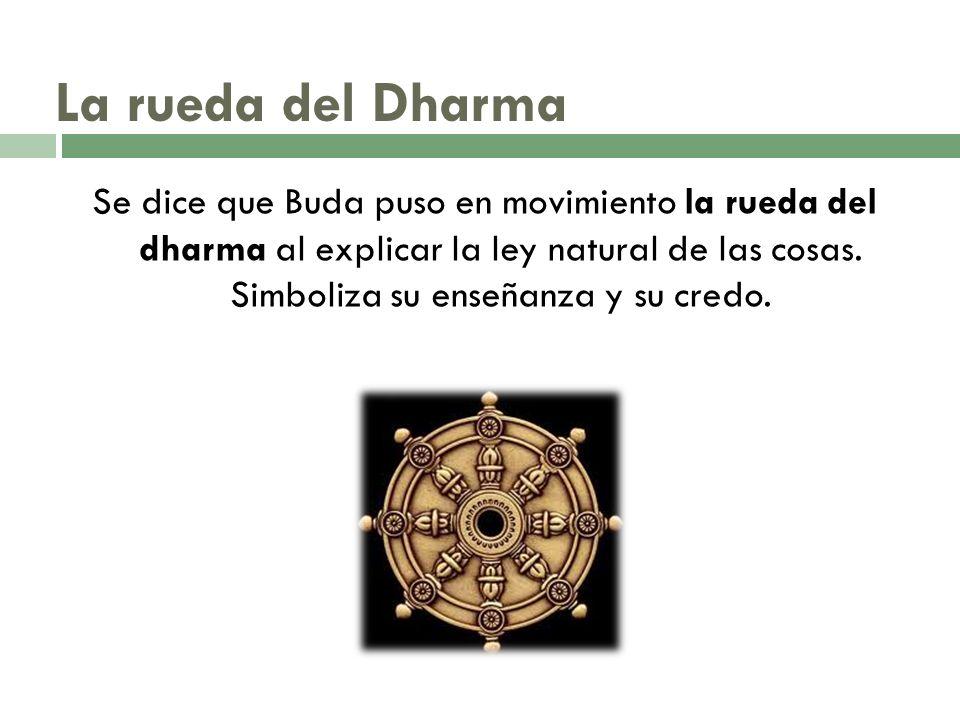 La rueda del Dharma Se dice que Buda puso en movimiento la rueda del dharma al explicar la ley natural de las cosas. Simboliza su enseñanza y su credo
