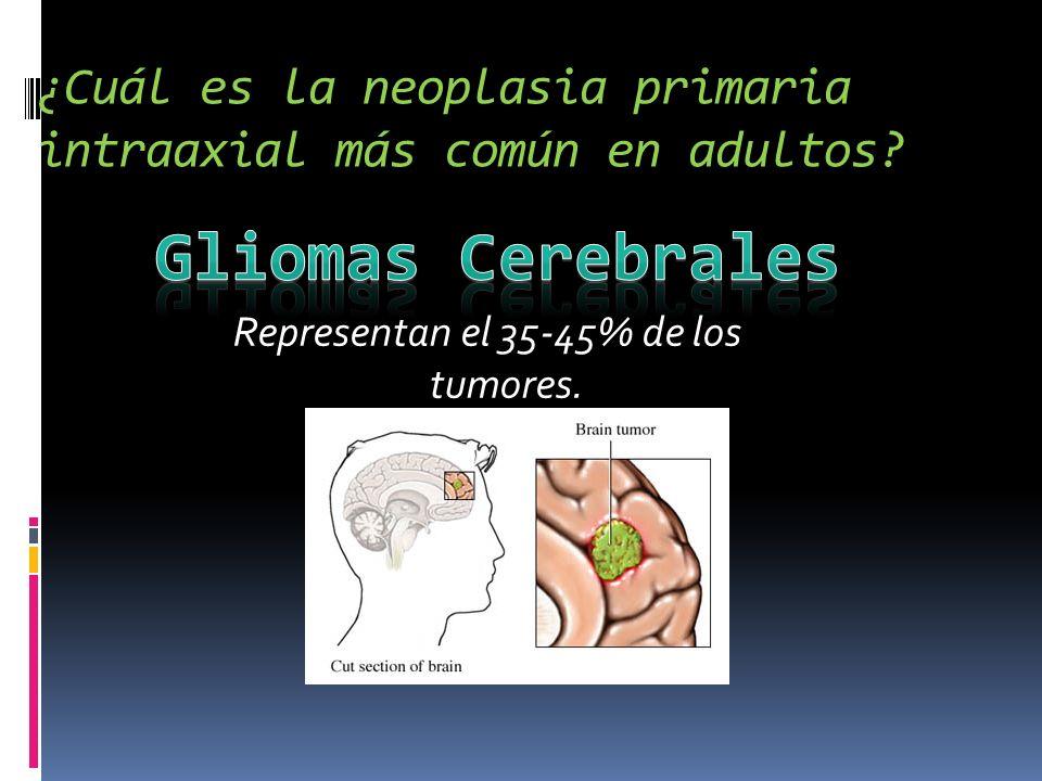 ¿Cuál es la neoplasia primaria intraaxial más común en adultos? Representan el 35-45% de los tumores.