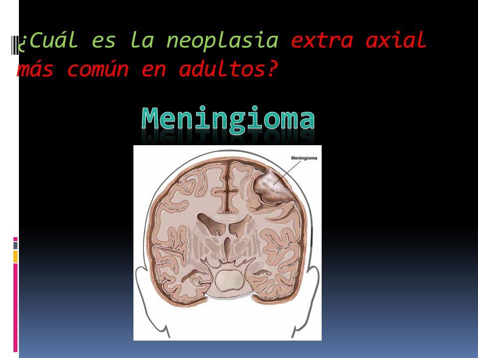 ¿Cuál es la neoplasia extra axial más común en adultos?