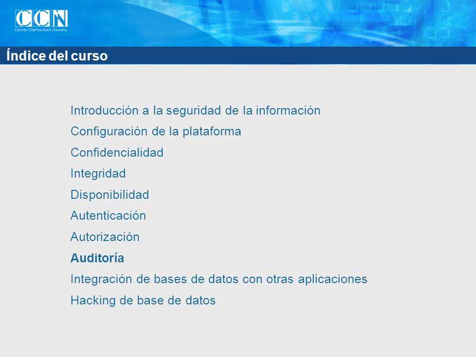Índice del capítulo Plan de auditoría Áreas a auditar Almacenamiento de los rastros de auditoría Información en los rastros de auditoría Auditoría de grano fino Examen de los rastros de auditoría