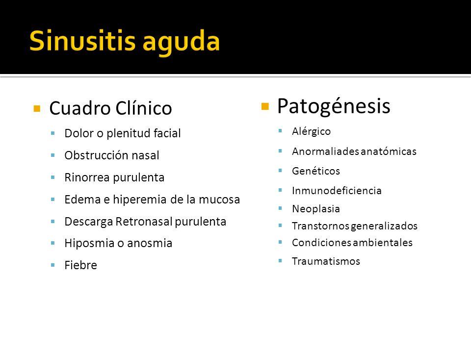 Cuadro Clínico Dolor o plenitud facial Obstrucción nasal Rinorrea purulenta Edema e hiperemia de la mucosa Descarga Retronasal purulenta Hiposmia o an