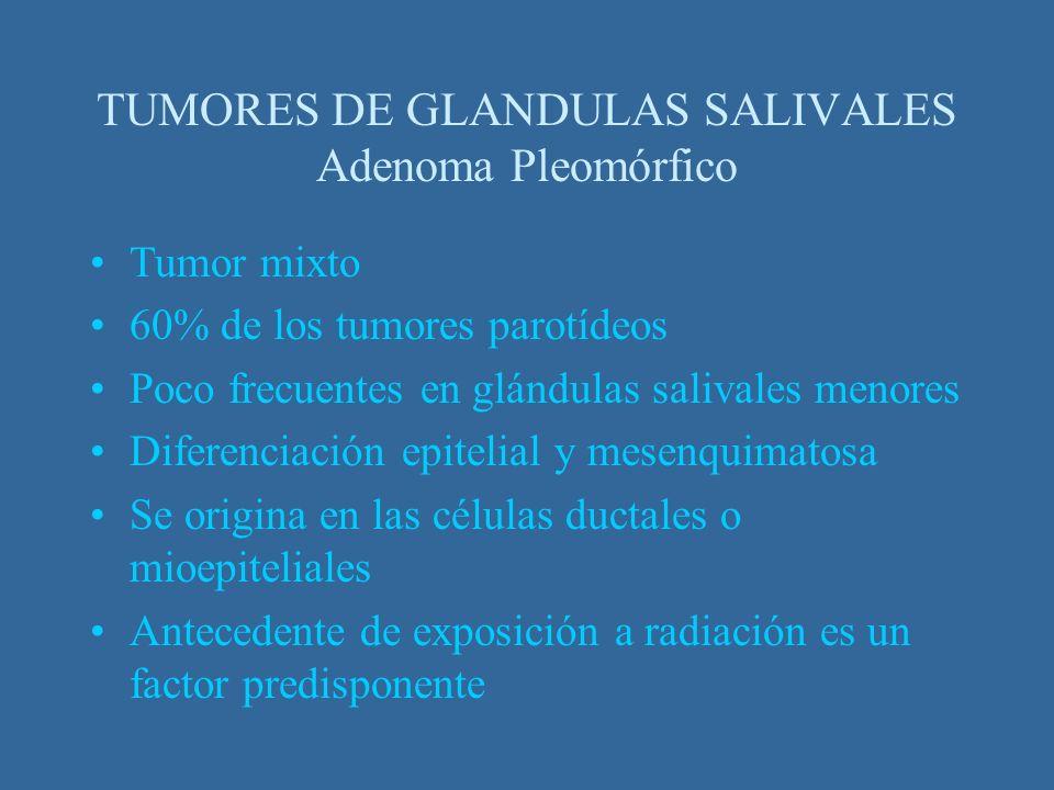 Tumor mixto 60% de los tumores parotídeos Poco frecuentes en glándulas salivales menores Diferenciación epitelial y mesenquimatosa Se origina en las c