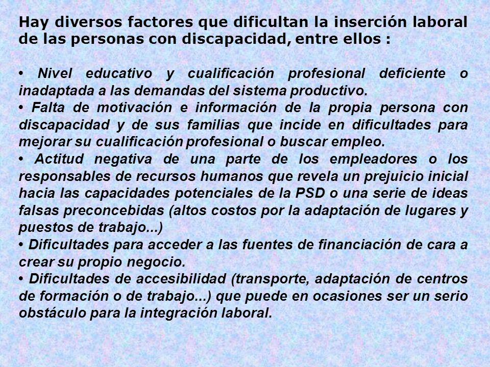 Hay diversos factores que dificultan la inserción laboral de las personas con discapacidad, entre ellos : Nivel educativo y cualificación profesional